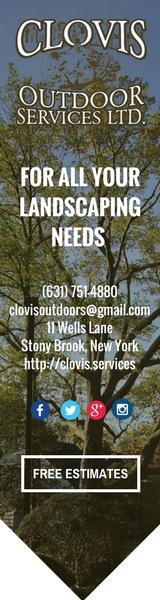 Clovis-plant tag