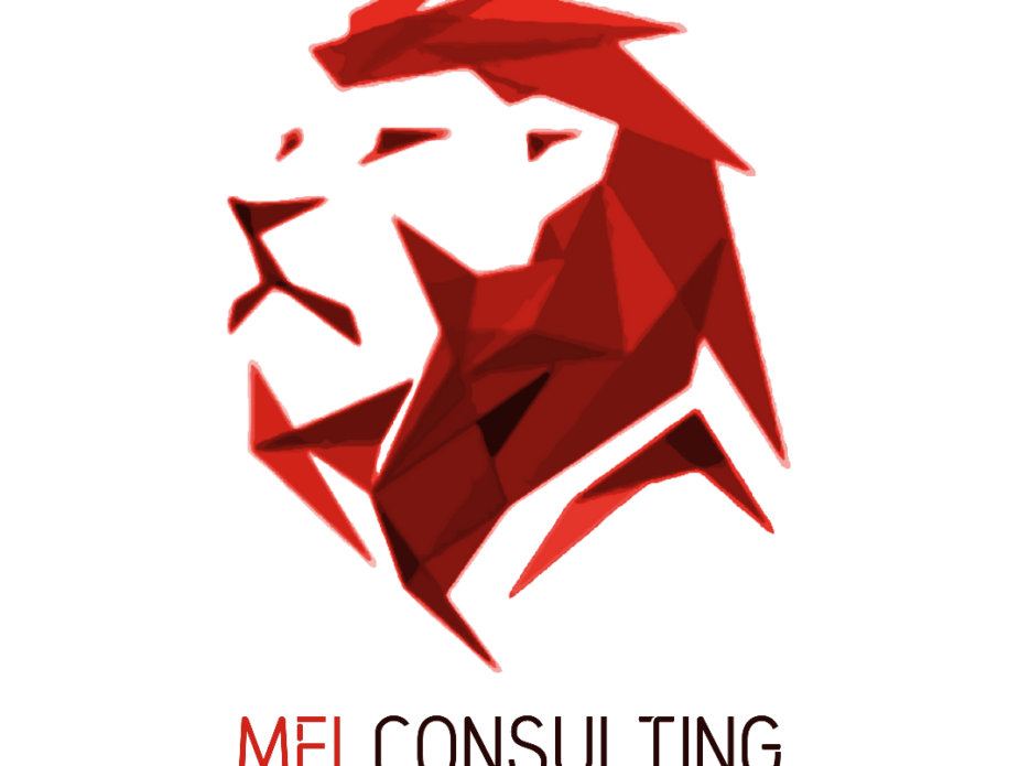 MEI Consulting Logo Transparent