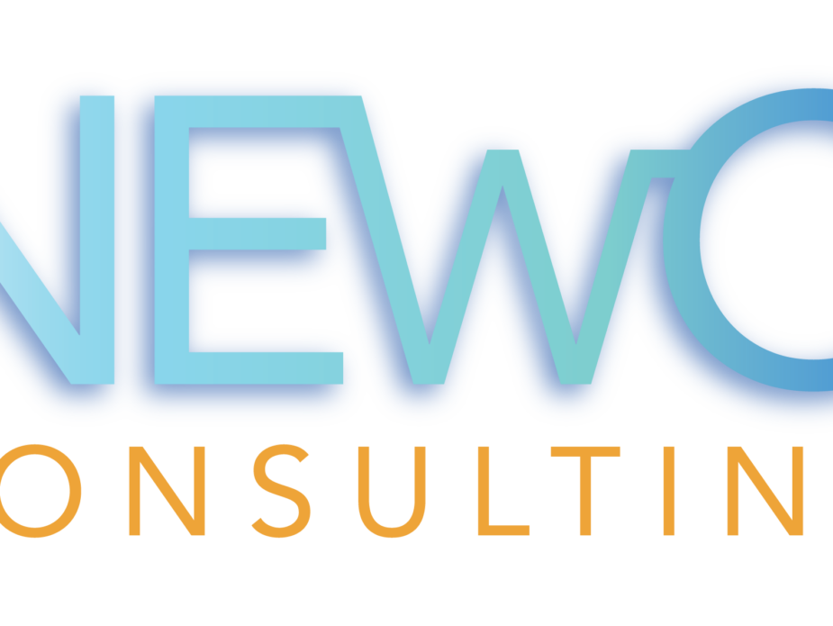 NEwO Consulting Logo Transparent