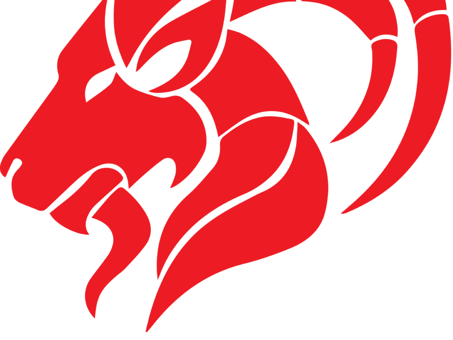 O3Y Consulting Logo Black Text