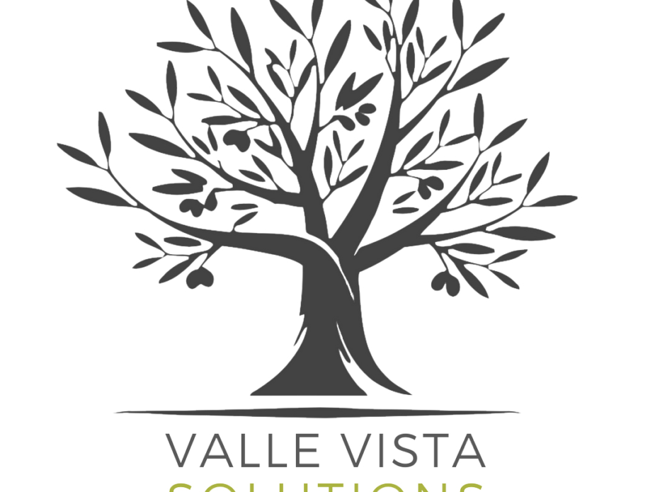 Valle Vista Solutions Logo PNG