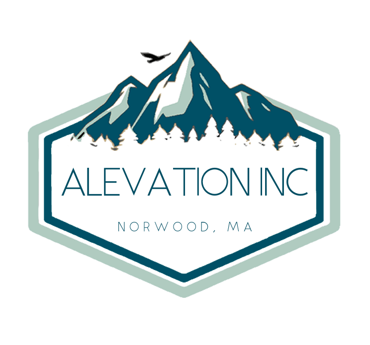 alevation logo non trans