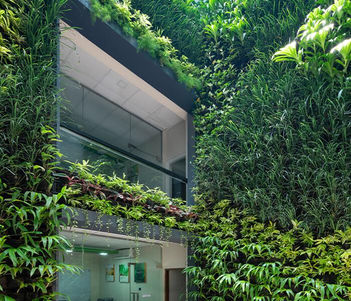 sri lanka, Skygrow, Skytech Engineering, vertical garden, Upfield Sri Lanka