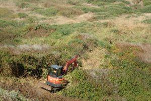 excavator removing gorse