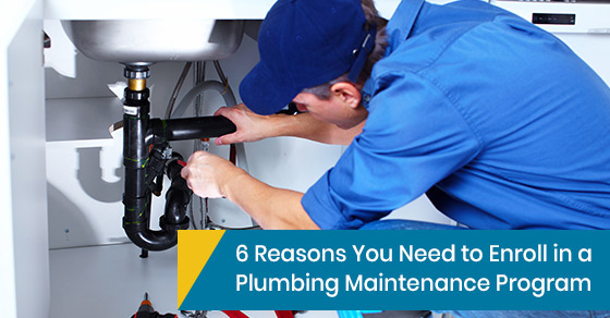 Plumbing maintenance program