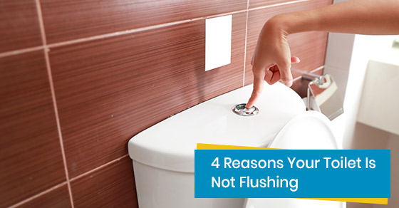 Reasons that prevent toilet from flushing