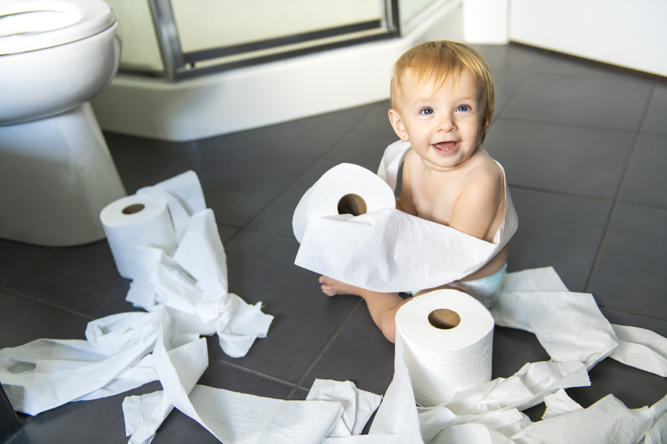 Toilet terrors of the toddler type