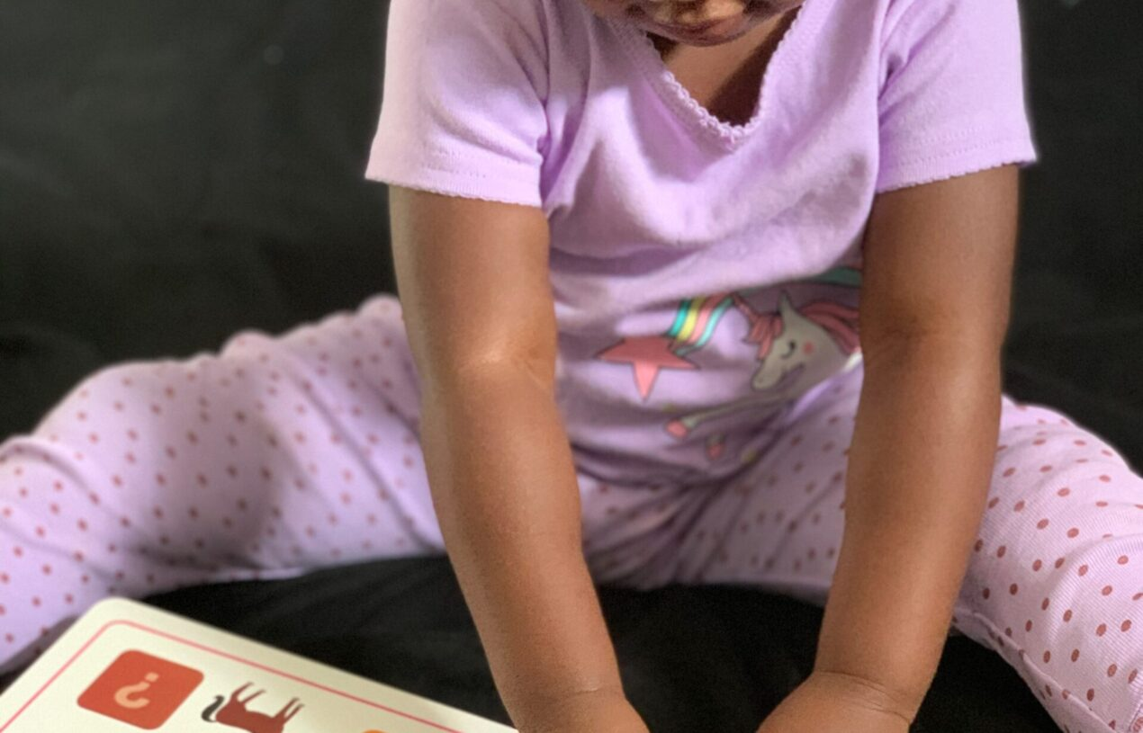 Reading and Learning with Priddy Books {Review}