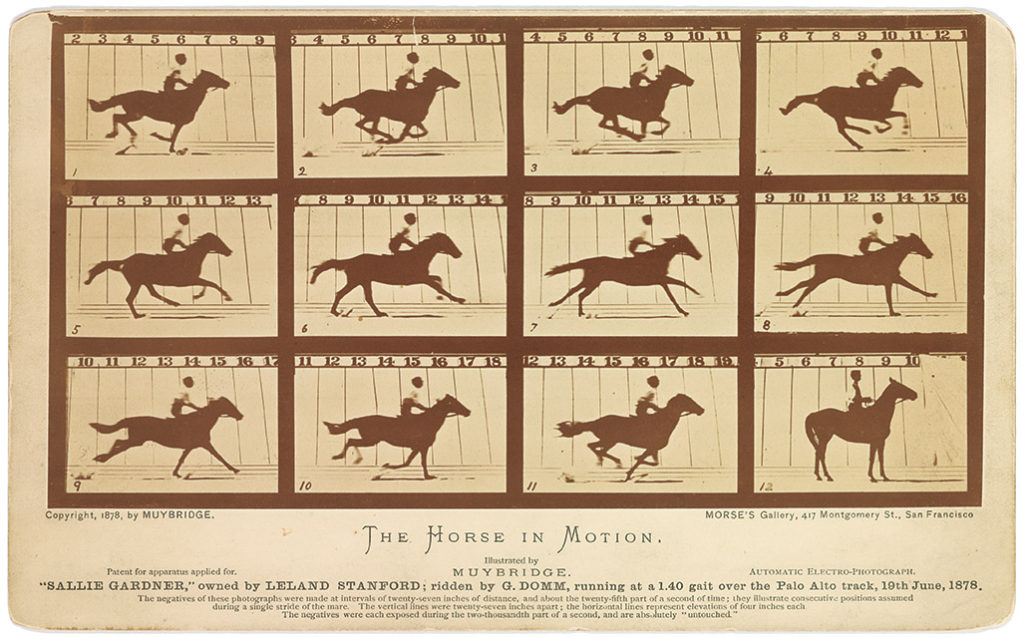 muybridge-horse-motion-7