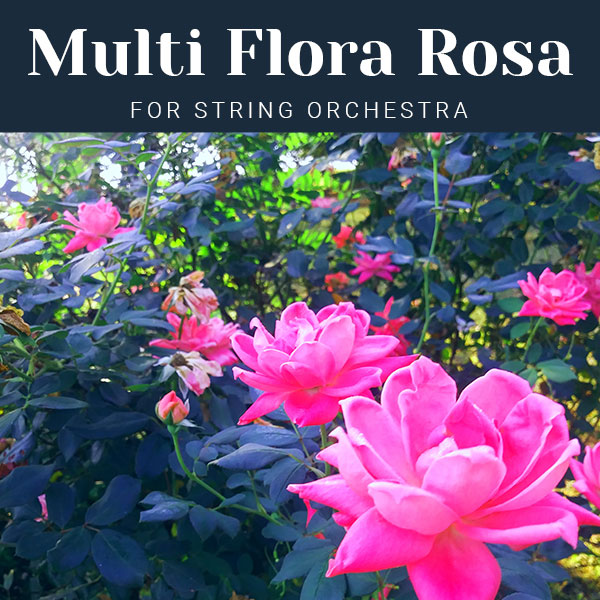 Multi Flora Rosa for String Orchestra