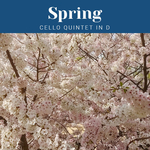 Spring Cello Quintet in D