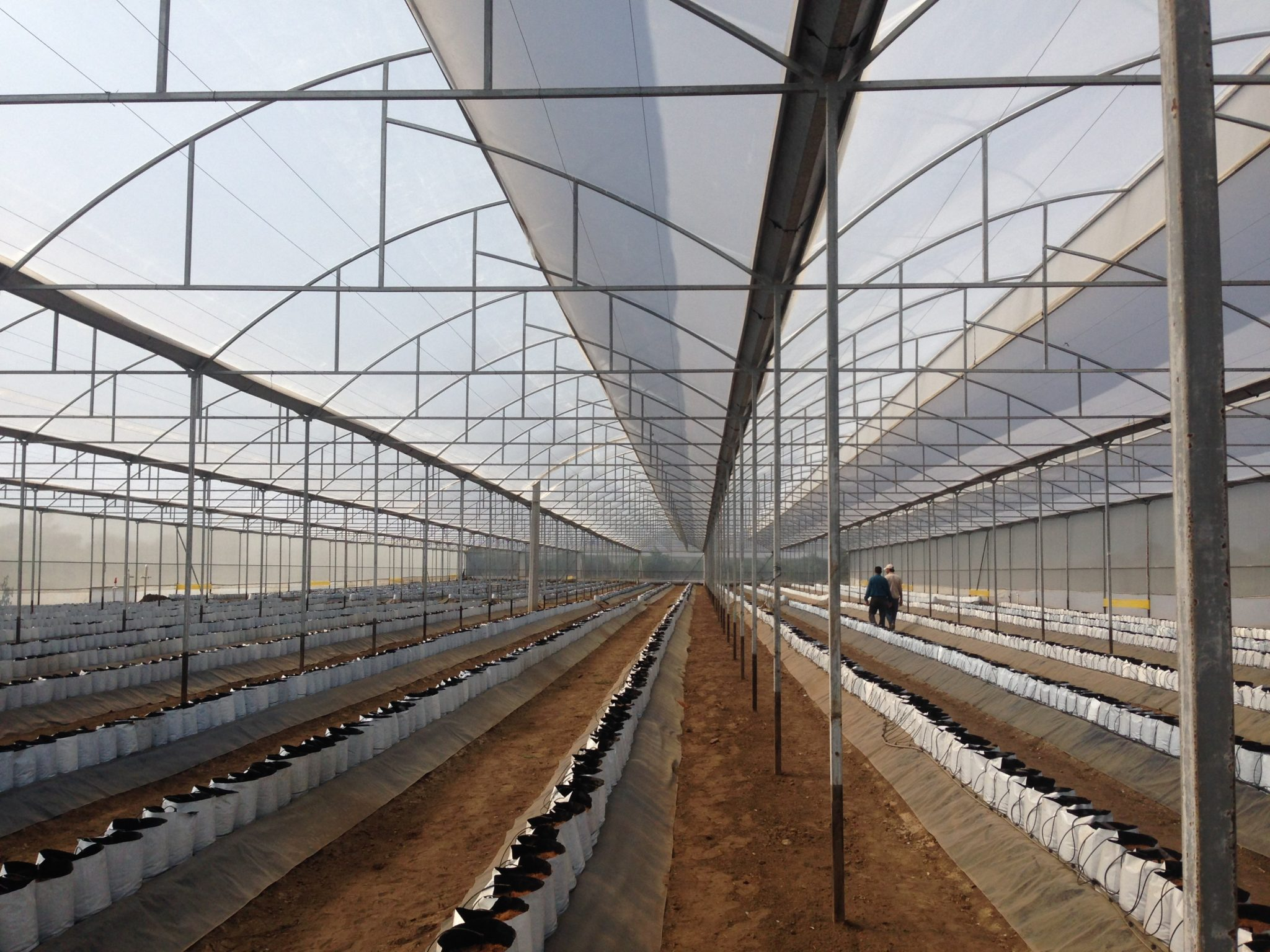 Servicios de Irrigación Agrícola o Residencial