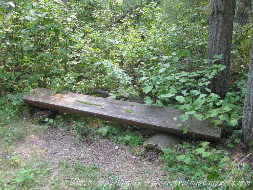 Sherwood Park Natural Area