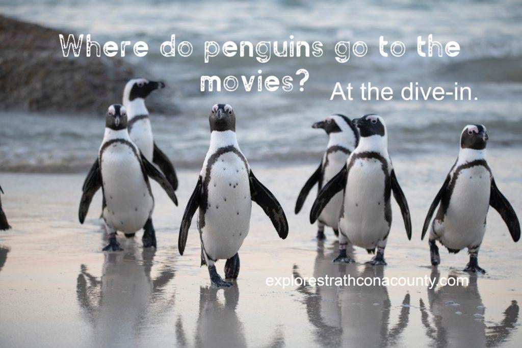 joke about penguins