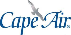 Cape Air Gull Logo Blue Silver - JPG