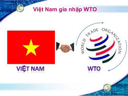 vh - VN gia nhap WTO