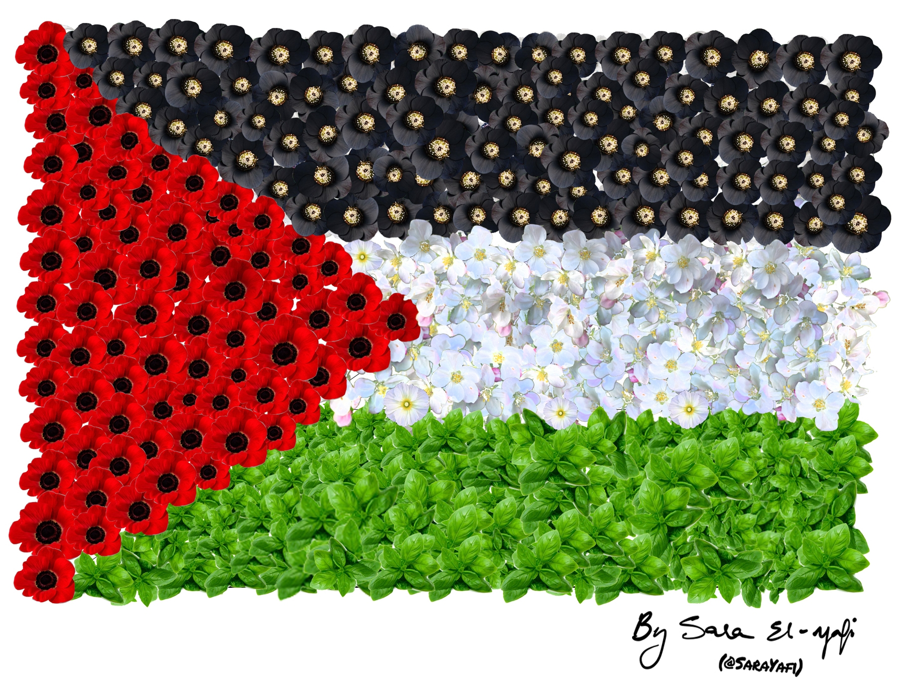 palestinian-flag-made-with-flowers-2-copy-2