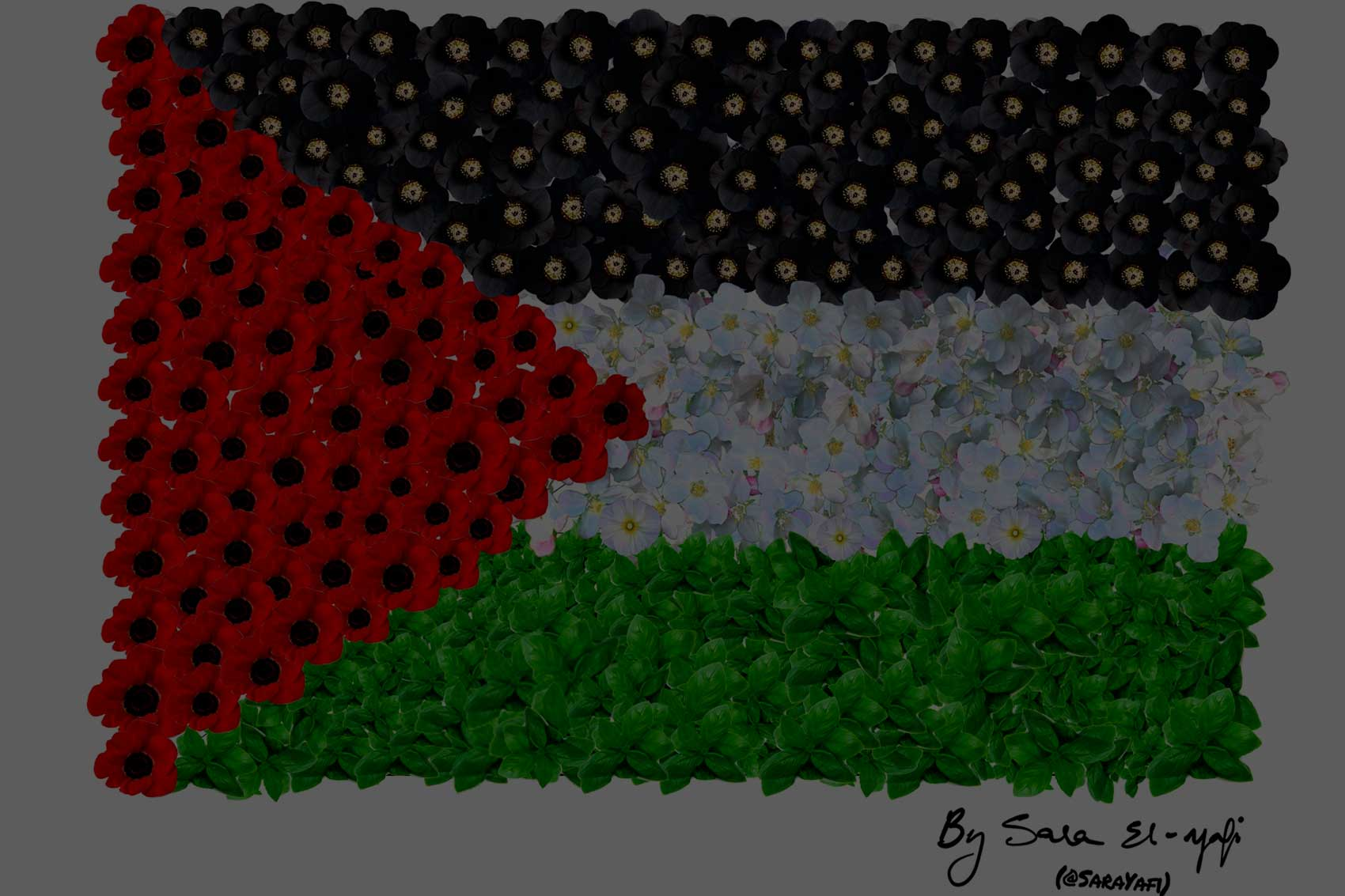 Dear President Obama, Please Recognize Palestine Before You Leave Office