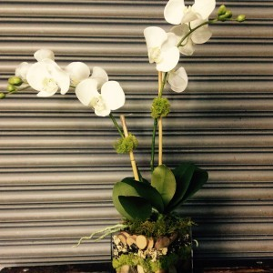 Faux Orchid by Just Priceless