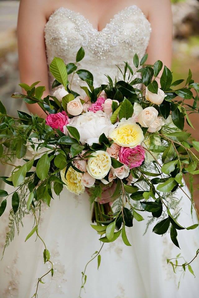 Visit Noel & Tom's Just Priceless Weddings