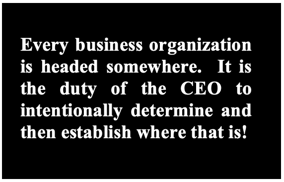 Role Of The CEO
