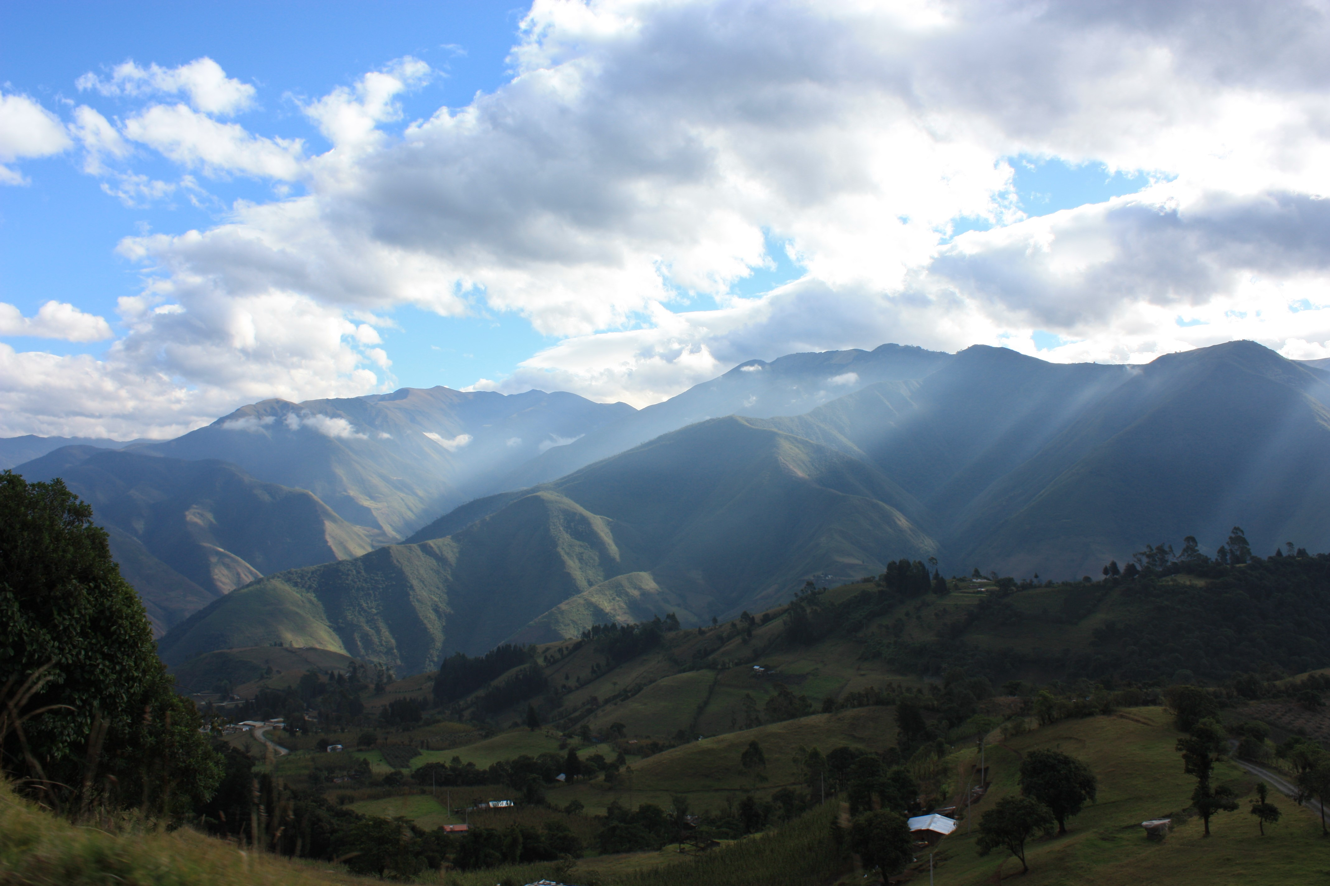 Landscape attributes determine restoration outcomes in the Ecuadorian Andes