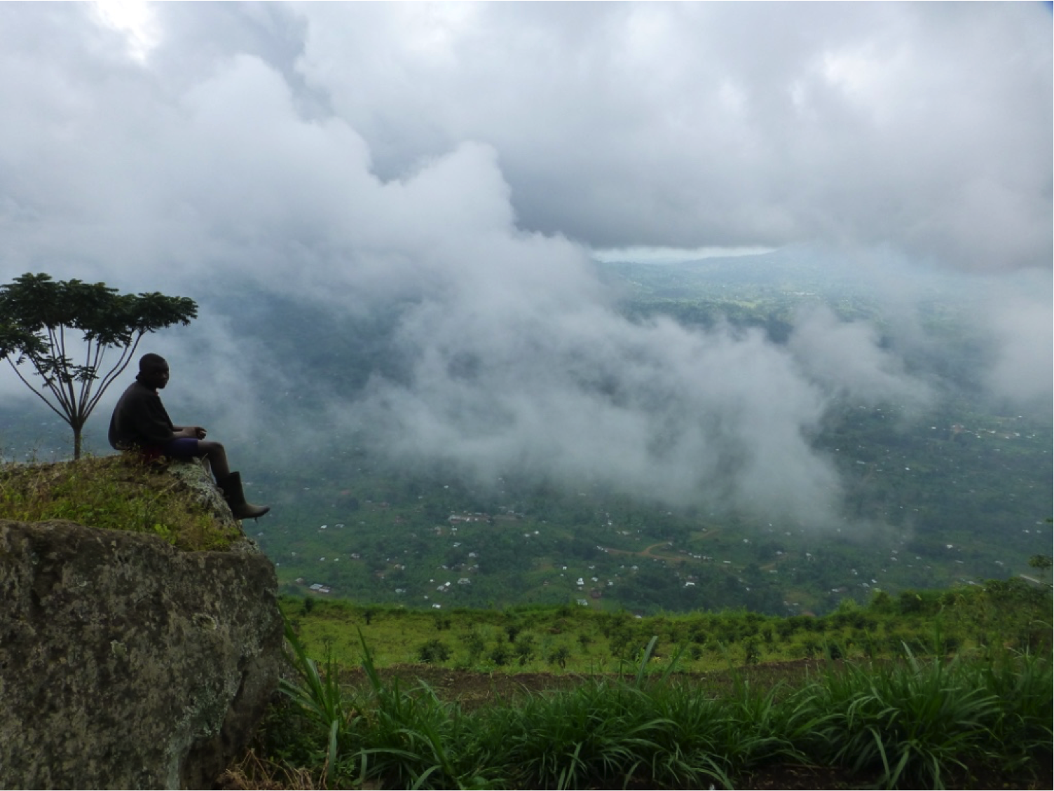 Finding Evidence for Land-restoration Strategies