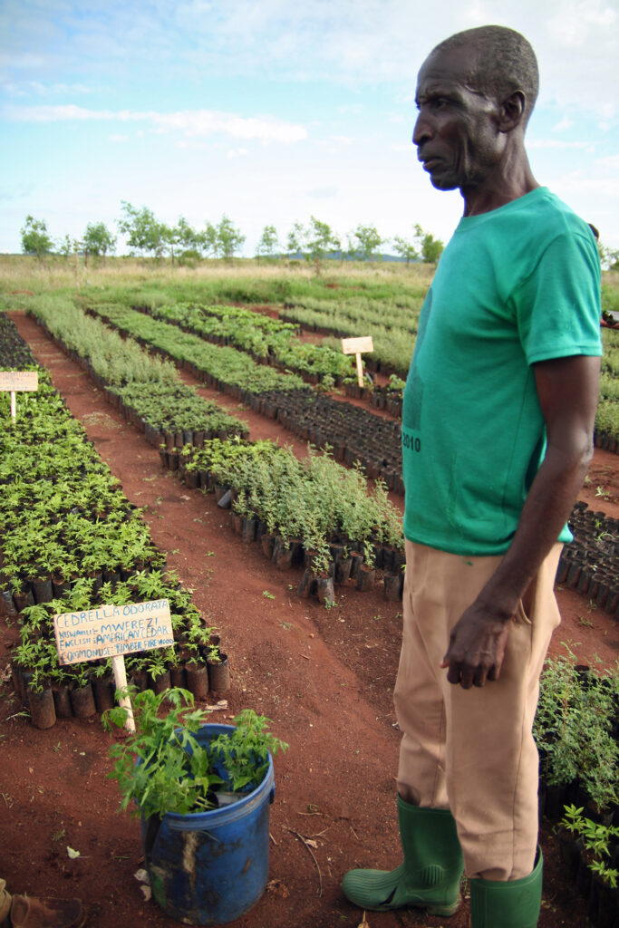Farmer collecting seedlings to plant on his farm in Tanzania (Photo: WeForest)