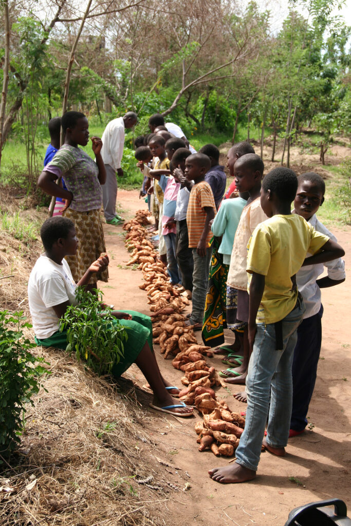 Dividing up harvest from a communal agforestry system in Tanzania (Photo: WeForest)