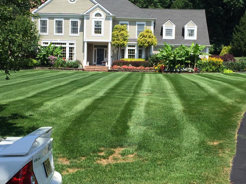 Landscape Maintenance – Basking Ridge New Jersey