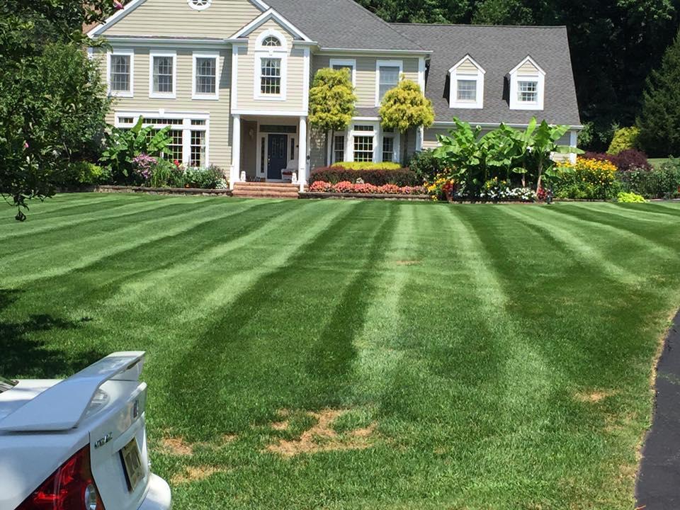 Landscape Maintenance - Basking Ridge New Jersey