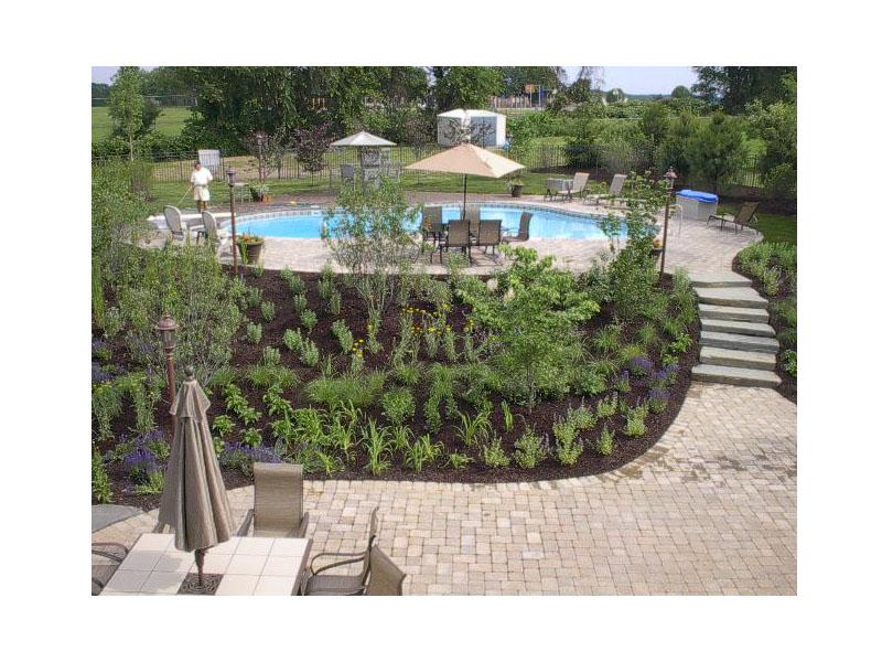 Pool Landscape, Long Valley NJ