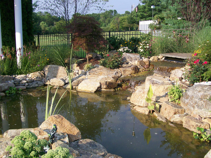 Poolscape Koi Pond, Chester NJ