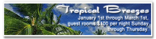 Tropical Breezes Special
