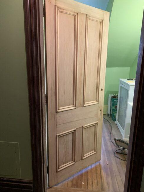 Lady Palm bathroom door stripped