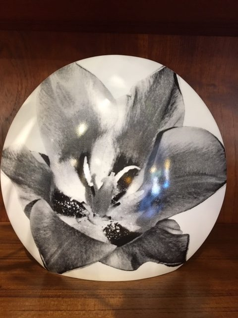 Vintage Black and White Mikasa Images Vase with Tulip by Michael Lax