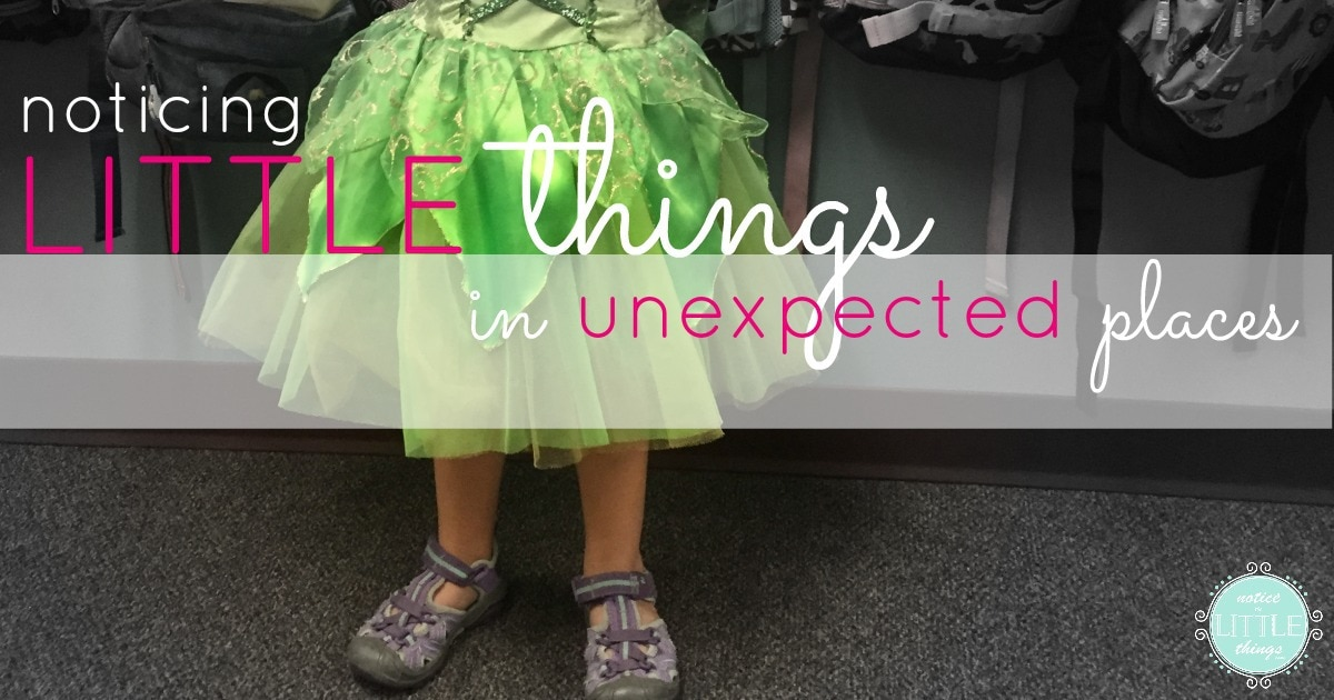noticing little things in unexpected places