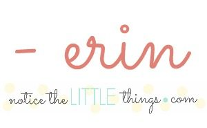 erin, author of notice the LITTLE things