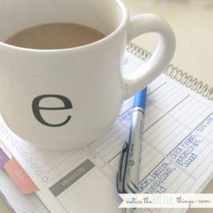 lowercase e mug from world market