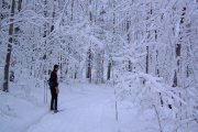 2012-03-04 Skiing