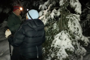2017-01-14 Moonlight Snowshoe (2)