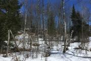 2018-03-22 Porcupine Trail 1