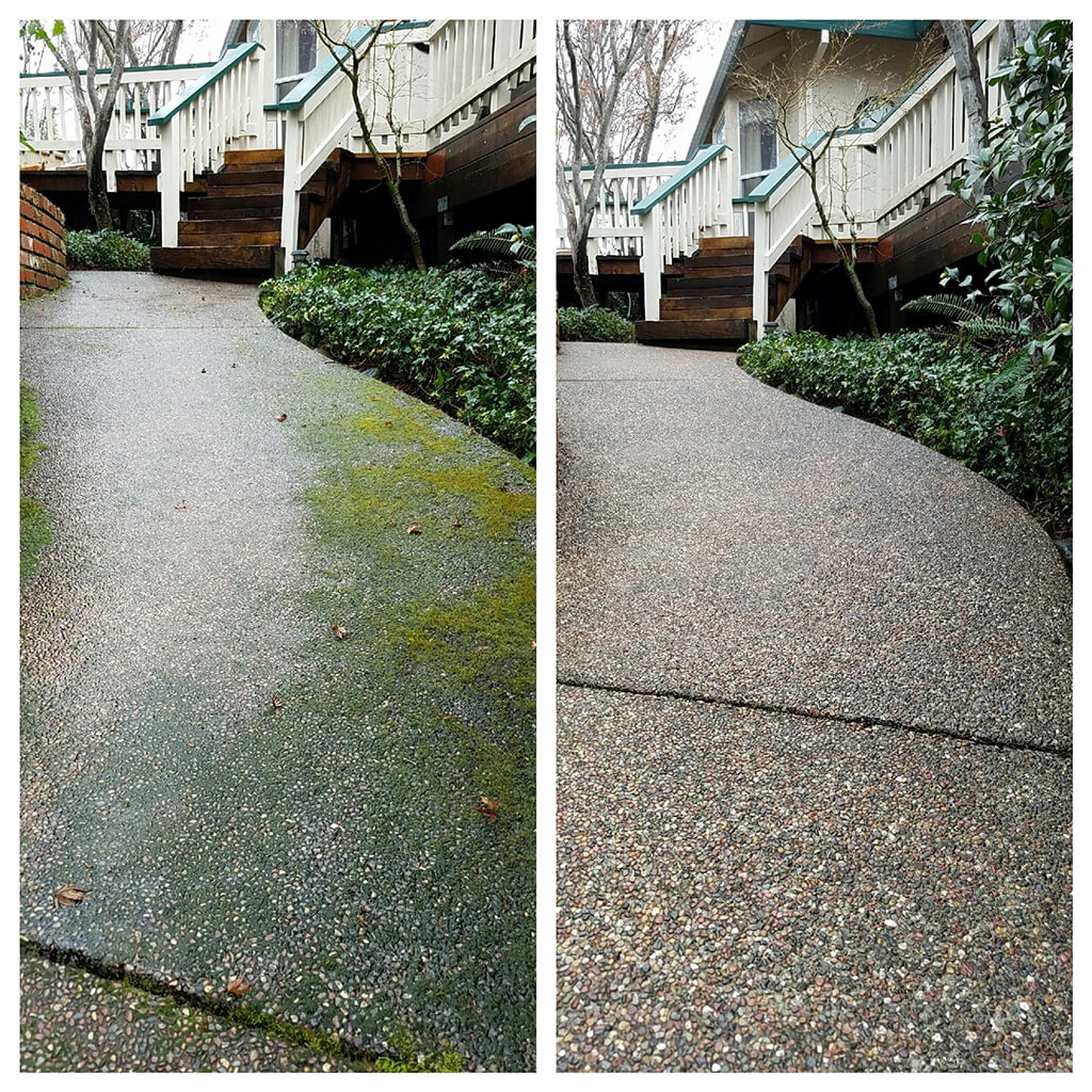 Before and after walkway pressure washing