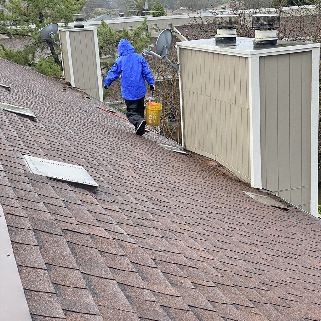 Roof & Valley Cleaning
