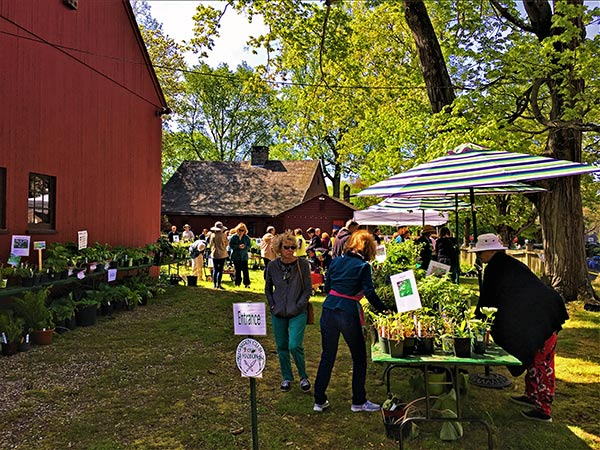 The entrance to the Garden Club of Madison's Annual Plant Sale at the Deacon John Grave House