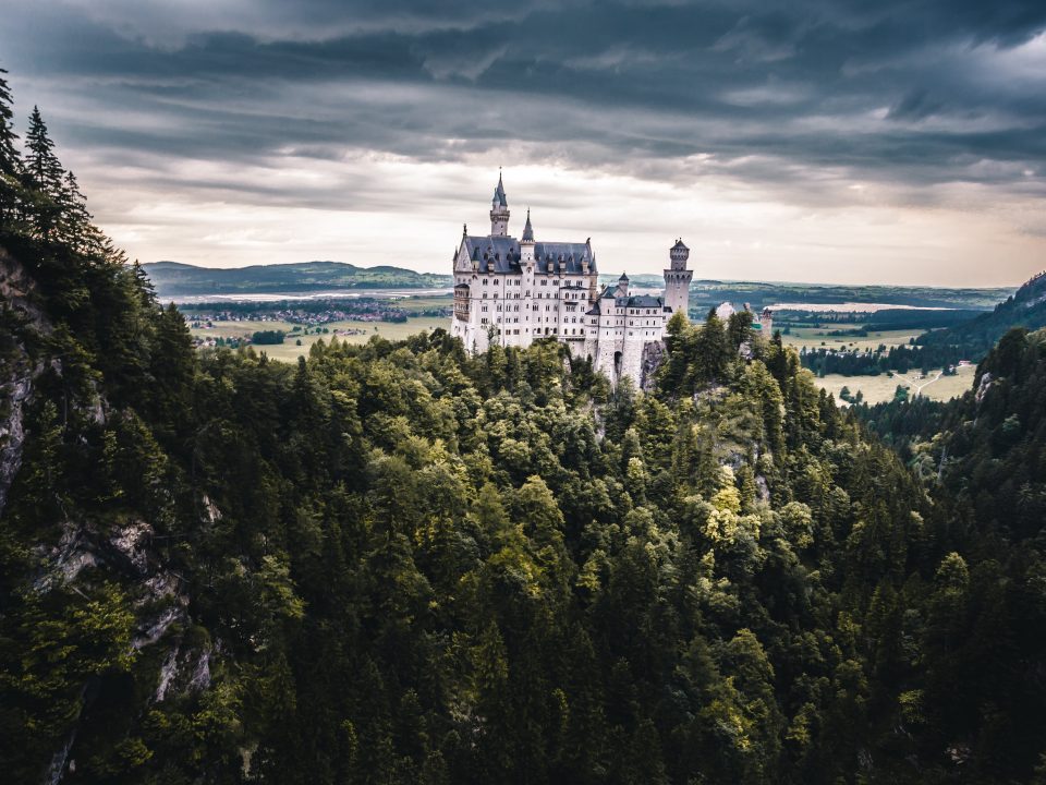 white castle with forest