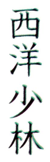 Seyio no shorin ryu