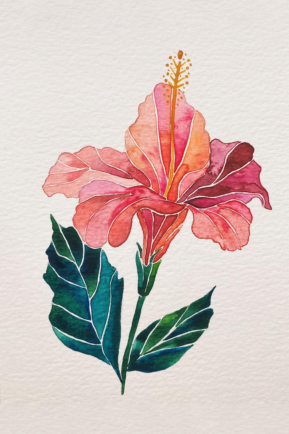 hibiscus-min