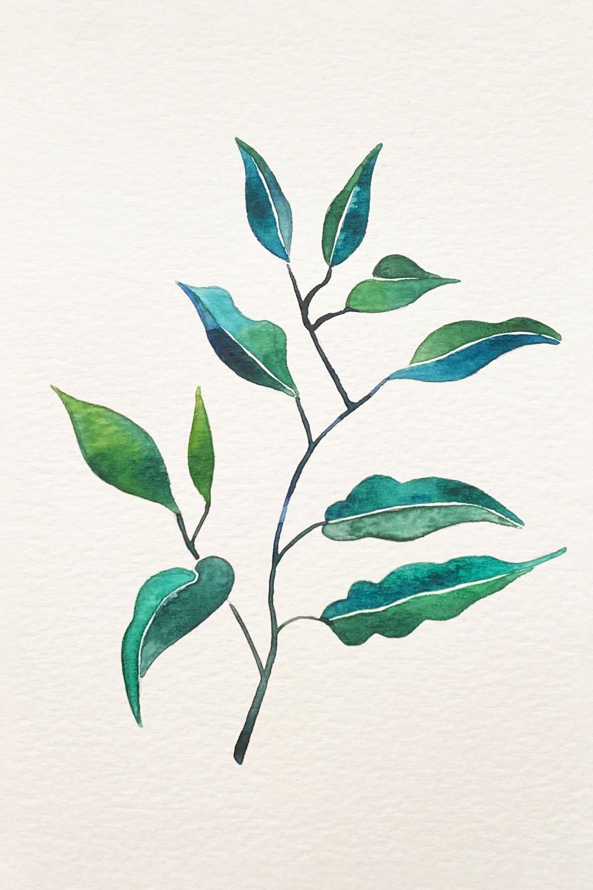 leafy 3-min