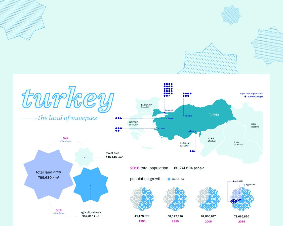 turkey country data